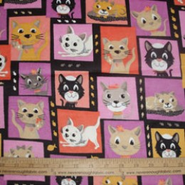 Creative Springs FLANNEL with cats on it