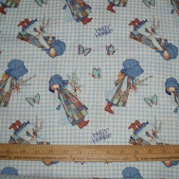 Holly Hobbie on blue gingham